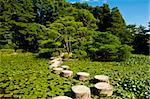Zen stone path in a Japanese Garden near Heian Shrine.Stones are surrounded by lotus leaves Stock Photo - Royalty-Free, Artist: Fyletto                       , Code: 400-04300623