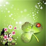 St. Patrick's Day background with flowers and butterflies Stock Photo - Royalty-Free, Artist: Merlinul                      , Code: 400-04308187