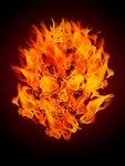 Fire Burning Flaming Skull Illustration Stock Photo - Royalty-Free, Artist: Davidgn                       , Code: 400-04314560