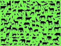 big collection of mix animals - vector Stock Photo - Royalty-Freenull, Code: 400-04326163