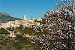 Scenic mountain village Polop, Costa Blanca, during almond tree blossom Stock Photo - Royalty-Free, Artist: hemeroskopion                 , Code: 400-04328218