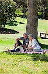 Senior couple  picnicking in the garden Stock Photo - Royalty-Free, Artist: 4774344sean                   , Code: 400-04328257
