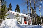 Picture perfect: beautiful sunny day out at the small cabin with red door deep in the woods. Stock Photo - Royalty-Free, Artist: Mirage3                       , Code: 400-04347231