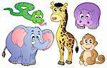 Set of cute African animals - vector illustration. Stock Photo - Royalty-Free, Artist: clairev                       , Code: 400-04356352