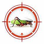 Sniper target with grasshopper Stock Photo - Royalty-Free, Artist: Merlinul                      , Code: 400-04368416