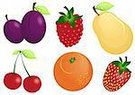 Vector illustration of fruits and berries