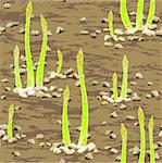 green asparagus spear emerging through the soil Stock Photo - Royalty-Free, Artist: 100ker                        , Code: 400-04380829