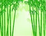 Bamboo forest background Stock Photo - Royalty-Free, Artist: dagadu                        , Code: 400-04382754