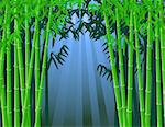 Bamboo forest background Stock Photo - Royalty-Free, Artist: dagadu                        , Code: 400-04382755
