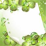 Sheet of paper and clover over springtime background Stock Photo - Royalty-Free, Artist: Merlinul                      , Code: 400-04383425