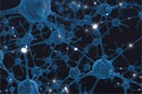 synapse - Neurons the Power of the mind Stock Photo - Royalty-Freenull, Code: 400-04385938