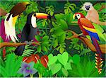 vector illustration of animal in the tropical jungle Stock Photo - Royalty-Free, Artist: dagadu                        , Code: 400-04386963