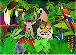 Animal in the tropical jungle Stock Photo - Royalty-Free, Artist: dagadu                        , Code: 400-04386965
