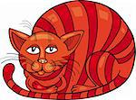Cartoon illustration of Red Cat Stock Photo - Royalty-Free, Artist: izakowski                     , Code: 400-04389534