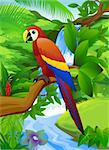 Parrot bird in the nature Stock Photo - Royalty-Free, Artist: dagadu                        , Code: 400-04394305