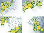 Set of 4 decorative backgrounds with yellow flowers patterns. Stock Photo - Royalty-Free, Artist: tatianat                      , Code: 400-04402933