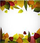 Autumn leafs abstract background with place for your text Stock Photo - Royalty-Free, Artist: orsonsurf                     , Code: 400-04405241
