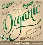 set of organic headlines, hand lettering; scalable and editable vector illustration;