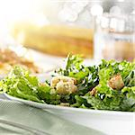 leafy green salad with croutons Stock Photo - Royalty-Free, Artist: hojo                          , Code: 400-04414194