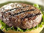 juicy hamburger patty closeup Stock Photo - Royalty-Free, Artist: hojo                          , Code: 400-04414197