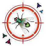 Sniper target with housefly Stock Photo - Royalty-Free, Artist: Merlinul                      , Code: 400-04418709
