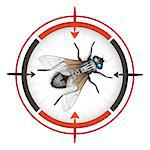 Sniper target with housefly Stock Photo - Royalty-Free, Artist: Merlinul                      , Code: 400-04418710