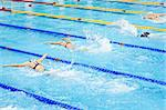 swimmers swimming in a pool Stock Photo - Royalty-Free, Artist: tarczas                       , Code: 400-04419018