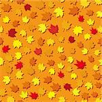 Autumn seamless background with maple leaves, vector illustration Stock Photo - Royalty-Free, Artist: MarketOlya                    , Code: 400-04423153