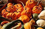 Basket of Holiday Pumpkins and Squash Stock Photo - Royalty-Free, Artist: surpasspro                    , Code: 400-04432623