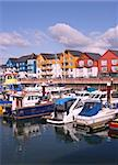 Houses and boats in a Marina in Exmouth, Devon.