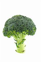 Fresh and healthy broccoli isolated on white background Stock Photo - Royalty-Freenull, Code: 400-04436074