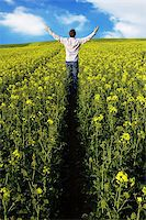 A man with his arms raised in a crop field Stock Photo - Royalty-Freenull, Code: 400-04436455