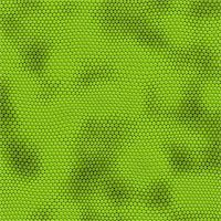snake skin - a very large illustration of green iquana lizard or snake skin Stock Photo - Royalty-Freenull, Code: 400-04446805