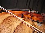 a violin laying on the fur-coat Stock Photo - Royalty-Free, Artist: foto_freelancer               , Code: 400-04449951