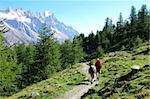 Trekkers walking along a mountain path, Mont Blanc valley, west Alps, Italy. Stock Photo - Royalty-Free, Artist: rcaucino                      , Code: 400-04466838