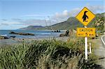 Penguins crossing sign in rural New Zealand, South Island Stock Photo - Royalty-Free, Artist: oralleff                      , Code: 400-04482058