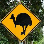 Road sign for cassowary bird crossing in forest. Stock Photo - Royalty-Free, Artist: iofoto                        , Code: 400-04512461