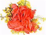 Bouquet made from poppy and field flowers. Stock Photo - Royalty-Free, Artist: arosoft                       , Code: 400-04528310