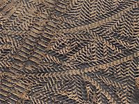 tyre prints on the construction site top view Stock Photo - Royalty-Freenull, Code: 400-04535746