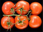 Tomatoes on the vine on black Stock Photo - Royalty-Free, Artist: victorburnside                , Code: 400-04540938
