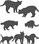 Dark siluets of cats, at different positions.Made at Adobe illustrator x4 Stock Photo - Royalty-Free, Artist: Aristodis                     , Code: 400-04581986