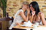 two girl chatting as close friend sitting in a cafe Stock Photo - Royalty-Free, Artist: carlodapino                   , Code: 400-04595283