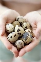 Woman hands holding fragile quail eggs, newborn care metaphor Stock Photo - Royalty-Freenull, Code: 400-04623418