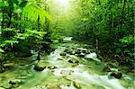 Tropical mountain stream with sunbeam in a morning.