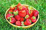 Wooden bowl of fresh strawberries on grassy lawn Stock Photo - Royalty-Free, Artist: karimala                      , Code: 400-04651055