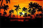 Palms silhouette opposite beautiful island in red sunset Stock Photo - Royalty-Free, Artist: Lipik                         , Code: 400-04651436