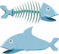 Fish with his fishbone, on white background  Stock Photo - Royalty-Freenull, Code: 400-04668989