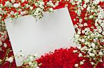 Blank invitation card in white flowers on shaggy red fabric Stock Photo - Royalty-Free, Artist: anatols                       , Code: 400-04685599