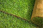 Green turf grass roll closeup and background Stock Photo - Royalty-Free, Artist: lightkeeper                   , Code: 400-04690518