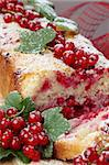 Homemade sponge cake with fresh organic red currants and sugar icing Stock Photo - Royalty-Free, Artist: ingridhs                      , Code: 400-04698195